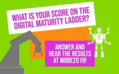 What is your score on the digital maturity ladder?