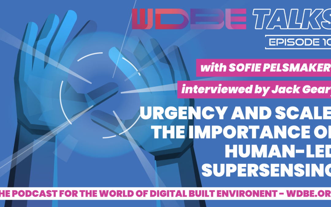 WDBE-talks: Urgency and Scale: Discussing the Importance of Human-Led Supersensing